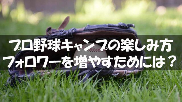 プロ野球キャンプの楽しみ方から学ぶ情報発信者が知るべきファンの増やし方
